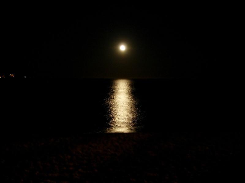 rheopole-nuit